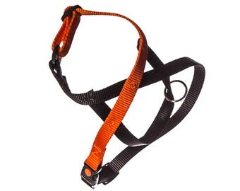 Basic Link-nylon dog harness, simple and brightly colored