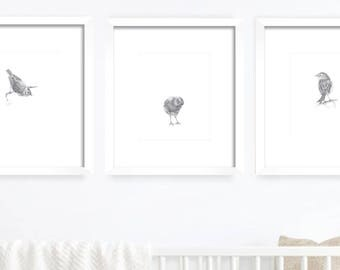 Little Birds. Nursery Art Print. Baby's Room Decor. Kids Wall decor. Kids Room Print. Baby Animal Print. Nursery Decor. Baby Wall Art