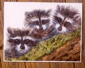 Playful Raccoons Watercolor Fine Art Print from an Original Watercolor Painting by artist Joy Neasley