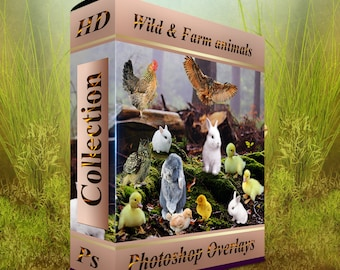 Photoshop overlays -horses, bunnies, rabbit, duckling, chick easter overlay, animals clip art overlays -wild animals .png animals clipart