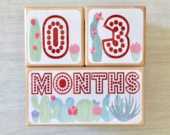 Baby Age Blocks - Baby Milestone Blocks - Succulents - Cactus - Girl- Monthly Baby Blocks - Nursery Decor - First Day of School - Gift