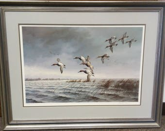 Sweeping the Narrows - Canvasbacks by David Maass in 1976, #86/580 signed by artist