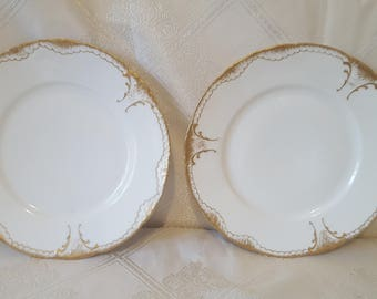 On Sale, Theodore Haviland Limoges, Limoges Plates, Antique Haviland Plates, French China, French Porcelain, Haviland Plates, Limoges China
