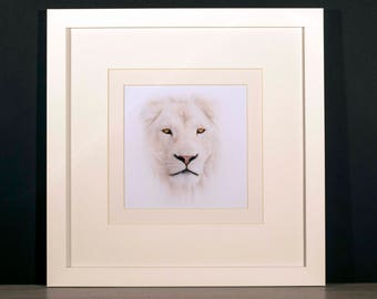 White Lion Glossy Print in Professional Hand Crafted Mount & Frame