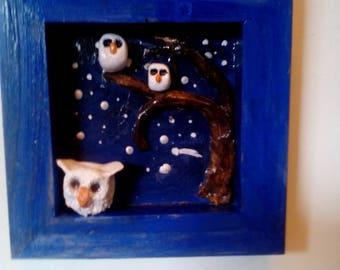 Night owls etoilee.3 admiring the stars.