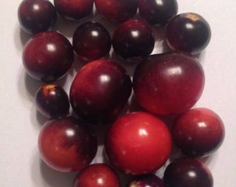 20 ea ORGANIC Indigo Rose Heirloom Cherry Tomato Seeds - KY Grown