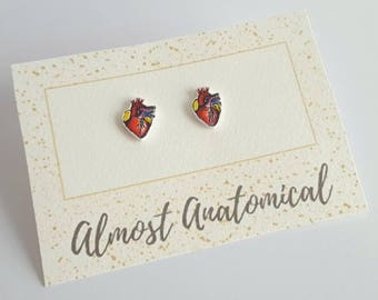 Anatomical Heart Stud Earrings - Handmade Original