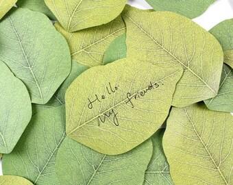 Leaf pad