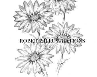 Birth Flower April, Daisy Coloring Page