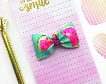 Watermelon Planner Charm/ Planner Charm / Bow Planner Charm