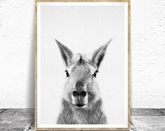 Mara Print, Peekaboo, Nursery Art, Peekaboo Animal, Rabbit, Nursery Decor Ideas, Kids Room Decor Ideas, Neutral Nursery, Patagonia Animals
