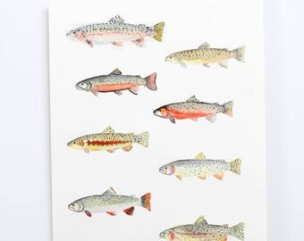 Original Watercolor Trout Painting / fly fishing / fly tying art