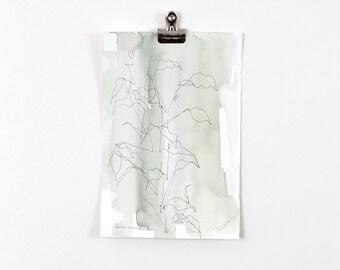 Green Blind Contour Line Botanical Wash