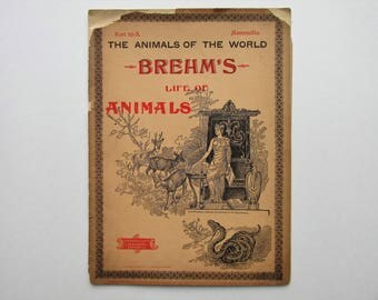 Antique 1896 Brehm's Life of Animals, Part 13-A, Illustrated, 1890's Booklet, Marquis & Company, The Beasts of Prey: The Dog Family