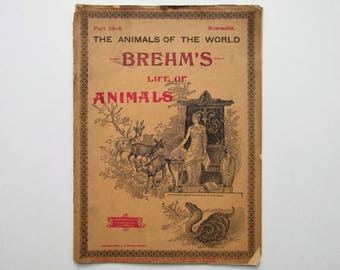 Antique 1896 Brehm's Life of Animals, Part 38-A, Illustrated, 1890's Booklet, Marquis & Company, Pouched Animals, Egg-Laying Mammals, Index
