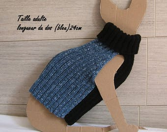 Blue and black sweater for sphynx cat