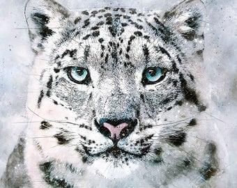 Snow leopard wildlife