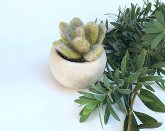 Felted Succulent,Wool Succulent,Succulent,Fake Plant, Fake Succulent,Felted Plant,Gift,Decoration,Handmade Plant,Plant Gift,Wool Plant,Decor