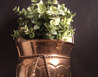 Vintage Brass Wall Plant Holder