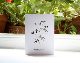 Black Lotus: Greeting Card
