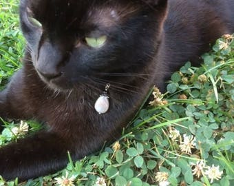 Cat Collar Charm, Cat Charm, Cat Bling, Cat Accessory, Pet Collar Charm, Dog Collar Charm, Dog Charm, Dog Accessory, Pet Charm, Labradorite