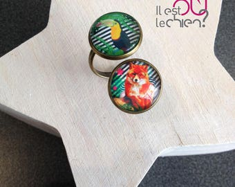 Double ring jungle Fox and toucan