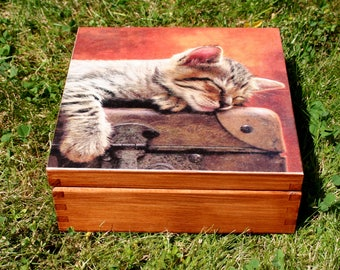 box cat, sweet kitty chest, home decoration, keepsake box, gift for cat lover