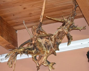 Driftwood Tree Root Accent Piece