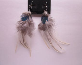 Ethically sourced Macaw feather earrings!