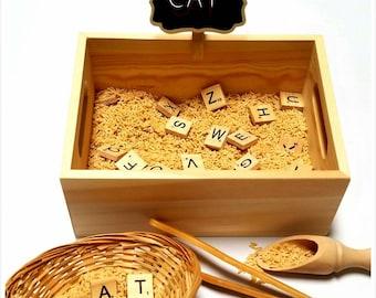 Alphabet Sensory Bin / Montessori / Reggio Emilia / Preschool / Fine-motor / Letter Recognition / Tonging Scooping / Waldorf / Transfer
