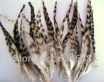 Lord Milori Chinchilla Feathers