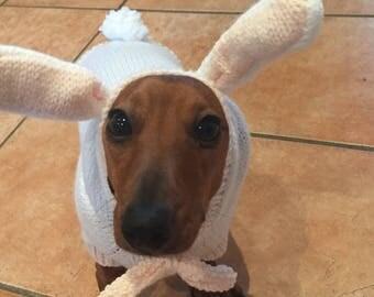 Easter Rabbit Costume for Mini Dachshund