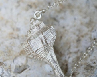 ON SALE Sea shell pendant on cable chain necklace