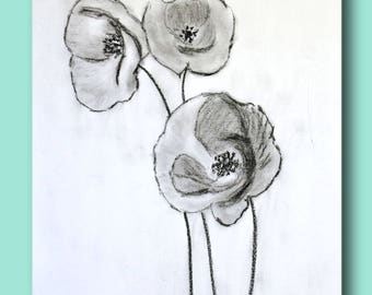 Three poppies pencil sketch