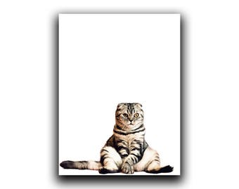 Cat Print, Nursery Animal Print, Wall Art, Poster, Grey Cat Print, Animal, Peekaboo Animal, Nursery Decor, Cat Art, Cat Lover Gift, Cat