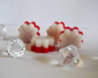 Cherry And Vanilla Scented Soy Wax Melts