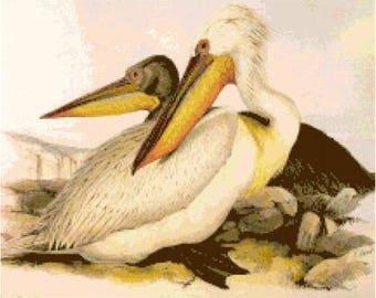 Pelicans Cross Stitch Chart