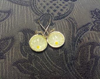 Hand painted daisy design earrings