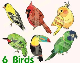 Tody Etsy Giant Kingfisher Bird