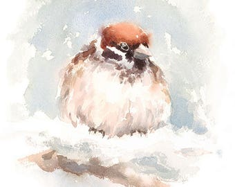 Bird Sparrow Watercolour Painting Q18
