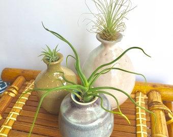 Set of 3 Vintage weed pots