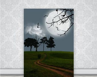 Beautiful Moonlit Photo Print