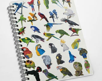Exclusive A5 100 page the Parrot family Parrot notebook