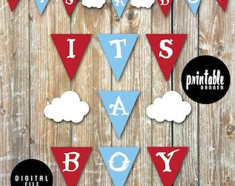 Little Aviator It's A Boy Rustic Vintage Hot Air Balloon Banner