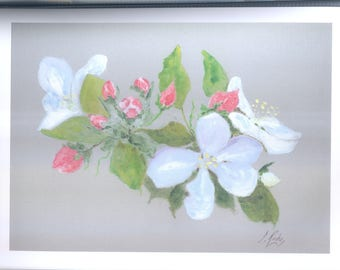 Original watercolor on cardboard Apple blossoms