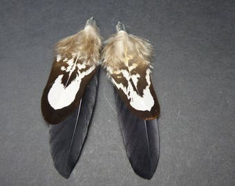 1 pair of exotic feathers around 7 No. 27 cms