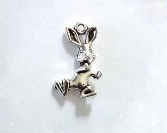 Set of 5 rabbit charms