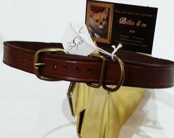 Chocolate leather dog collar