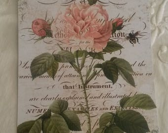 Vintage postcard for scrapbooking / old pink decor / embellishment