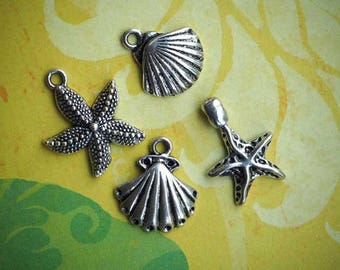 lot 4 charms, seashell and starfish, silver, 15mm to 20mm